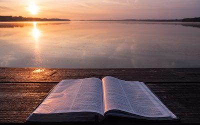Gli imprenditori nelle parabole di Gesù